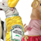 http://www.we-care.com/wp-content/uploads/2019/10/who-needs-couples-costumes-when-you-have-a-dog.png